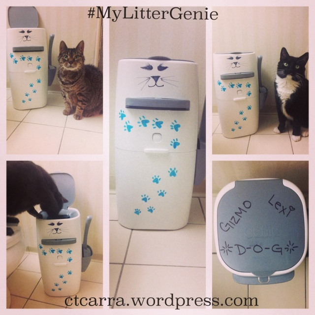 Litter Genie Review Look At Me Its Carra D