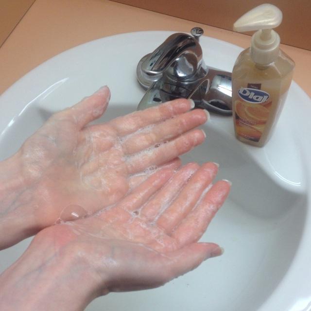 Dial Sugar Cane Husk Scrub Soap Suds